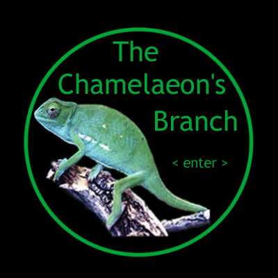 Chamelaeon's Branch 3.0